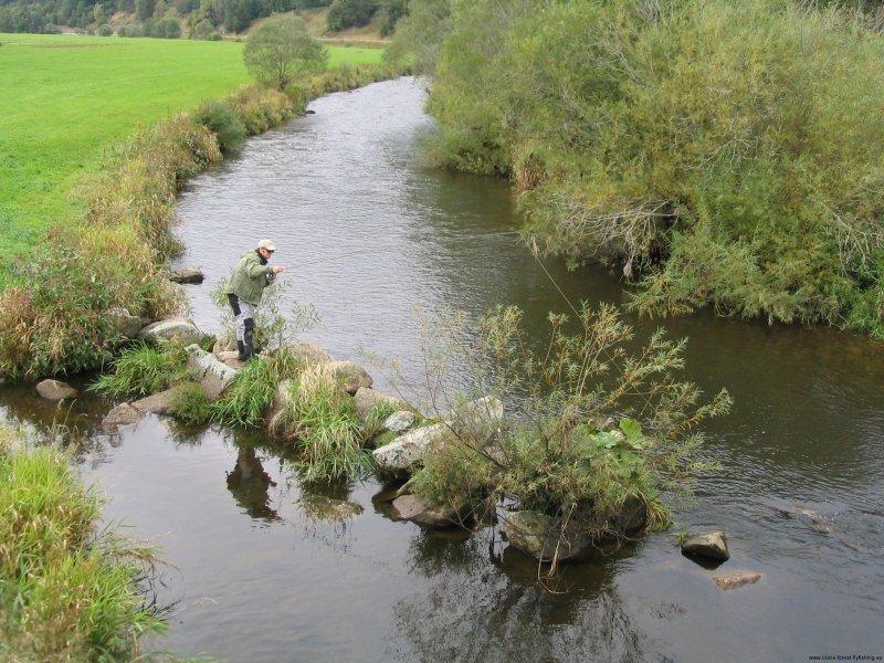 Downstream Wet Fly (Breg, Bernreutehof)