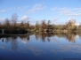 Lac de Cigogne - Storchenreservoire in Seltz (F)
